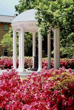 Where to Eat and What to See in Chapel Hill : Attention future tarheels or reminiscing alumni, I have created the perfect guide help you fall in love with Chapel Hill. Unc Chapel Hill, Southern Architecture, College Aesthetic, Unc Tarheels, University Of North Carolina, Back Road, Carolina Blue, Beautiful Places, Beautiful Scenery