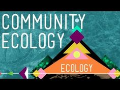 Competetion is NOT the main way species interact. They mainly get along.  ▶ Community Ecology: Feel the Love - Crash Course Ecology #4 - YouTube