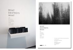 WHAT DESTROYS WHAT by SLEEP—PROJECTS , via Behance