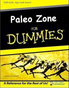 Zone for Dummies Finail