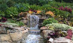 Seaworld Waterfall