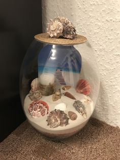 Home made shell decoration