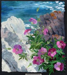 Growing on Serpentine rock, the flowers above Kynance Cove on the Lizard Peninsula in Cornwall often only found in that part of the county. This is particularly true of Bloody Cranesbill that nestles between lichened boulders of Serpentine with a backdrop of rich blue sea.