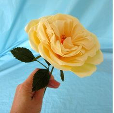 Finally!  Crepe paper rose, David Austin rose, heirloom rose, garden rose, tutorial