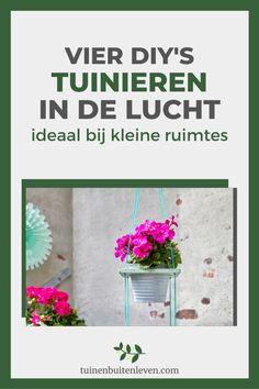Geraniums, Garden Ideas, Diys, Om, Plants, Bricolage, Do It Yourself, Landscaping Ideas, Plant