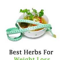 Visit our site http://www.herbsforweightloss.co/ for more information on Herbs For Weight Loss. Herbs for weight loss are also identified to provide a person with an increase in energy levels; this in turn helps in maintaining a regular exercise regime. In addition, these herbs for weight loss also help the individual absorb their food better and the metabolism also quickens and is more proficient.