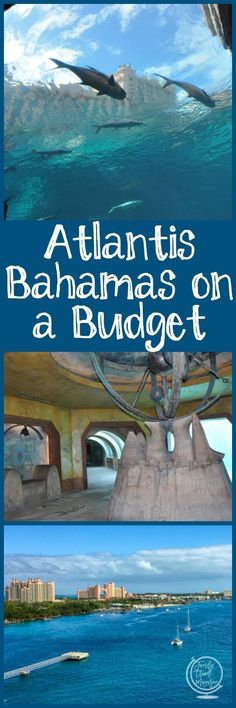 Tips and tricks for saving money while still having an amazing Atlantis Bahamas vacation while on a budget. #ad #familytravel #atlantis