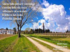 Solo lo stolto percorre correndo il cammino della vita senza soffermarsi ad osservare le bellezze del creato. (Proverbio Tibetano)