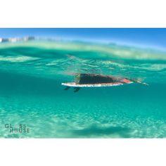 Magic carpet ride  #bondi #bondibeach #bonditobronte #aquatech #aquatic_imagingsolutions #nikon #nikontop #awesome #ausfeels #australia #beach #beachlife #d750 #summer #easternsuburbs #exploreaustralia #glasshousephotography #ilovebondi #northbondi #madeofocean #mynikonlife #ocean #picoftheday #sogood #visitnsw #vitaminsea #swimmingpool #sydney #paradise #tropical by glasshousephotography http://ift.tt/1KBxVYg