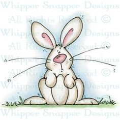 Ronnie Rabbit =  Item Number: #LY860
