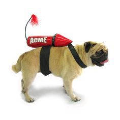 LOVE this doggy halloween costume! $22