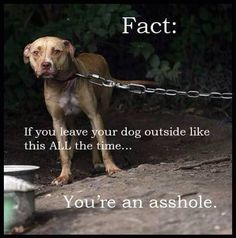 Never leave your furbaby out for more than 3 hours at a time, unless a case of emergencies. Imagine how you would feel if your guardian left you, chained outside all the time.