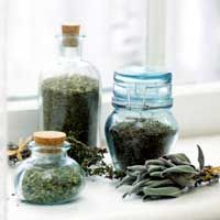 Harvesting Herbs from Your Garden