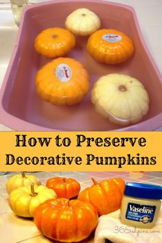 1) Give your pumpkins a bath in 10 parts water to 1 part bleach. Soak them stem side down to keep them from bobbing up out of the water.  2) After letting them sit for 10 minutes or so, dry them off and then buff with Vaseline and a soft cloth to make them shiny.