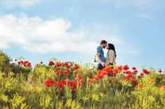Envision Image Photography   I love the pop of color between the red flowers, blue sky, and green foliage
