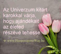Hálát adok a mai napért. Az Univerzum kitárt karokkal várja, hogy ajándékait az életed részévé tehesse. Csak az első lépést tedd meg. Menj elébe! Csak te teheted meg... És életed felülmúlja minden várakozásod. Így szeretlek, Élet!  ⚜ Ho'oponoponoWay Magyarország ⚜ OKTÓBER 22-23-ÁN HO'OPONOPONO TANFOLYAM BUDAPESTEN. A LÉLEKNEK. www.HooponoponoWay.hu