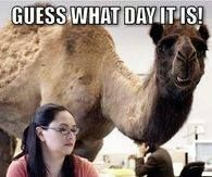Whoot whoot! Guess what day it is! Its that day again! Happy Hump Day People! Only 2 days till the Weekend! Let's finish strong!