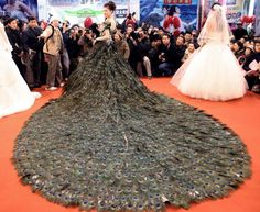 This Chinese wedding dress has 2009 peacock feathers as part of the train, at a cost of $1.5 million