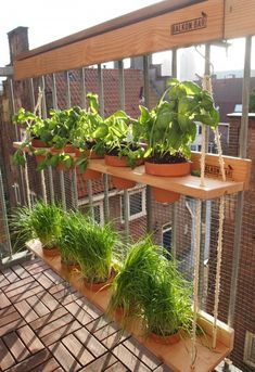 Balcony Planters, Small Balcony Garden, Small Balcony Decor, Balcony Design, Raised Garden Beds, Garden Design, Balcony Door, Balcony Gardening, Small Balconies