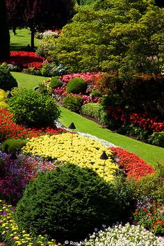 Butchart Gardens, Victoria, Canada - one of my fondest memories!  Photo by Rob Niebrugge