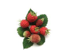5 pieces polymer clay berriesberries handmadeitems