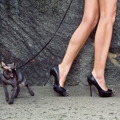 I love everything about this photo. Spike heels, angry Rock kitty...