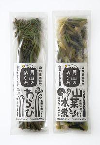 Japanese block printed packaging label   Gassanj