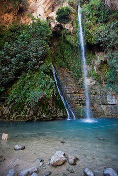 Ein Gedi Waterfalls . Israel
