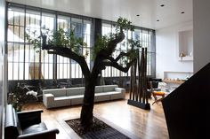 Eclectic - nature in the home. oh and i love the room divider!