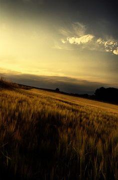 Infinite landscape