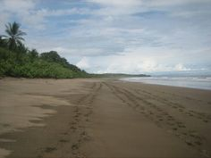 Costa Rica pua vida