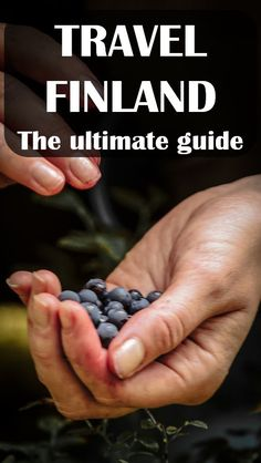 How to get the most when you travel Finland? Northern lights, husky safaris, cute wooden houses, and thousands of lakes and archipelago islands. It is a fast-growing tourist destination. Europe Travel Tips, European Travel, Travel Advice, Travel Destinations, Travel Guides, Travelling Europe, Winter Destinations, Traveling Tips, Lappland