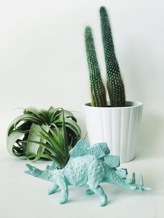 Small Pastel Blue Stegosaurus Dinosaur Planter with Air Plant Included! Perfect for home, work, or even a dorm! These dinosaur planters add tons of personality to any room! Air plants are very low maintenance and are perfect for low light environments such as offices, living rooms,
