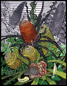 Banksias by Gail Kellett, w x h Botanical Drawings, Botanical Art, Australian Native Flowers, Australian Wildflowers, Australian Plants, Linocut Artists, Indigenous Art, Stencil Painting, Watercolor Illustration