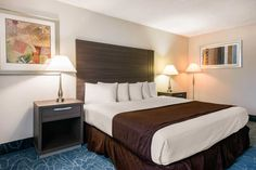 Econolodge Orlando Airport:- Single Bed Room The Econo Lodge® is a conveniently located Orlando International Airport hotel that's easy to find, easy to book and easy on your wallet.Our economy hotel is located near downtown Orlando and the popular I-Drive.