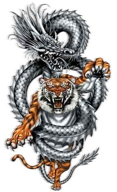 dragon tigre Pictures, Images and Photos                                                                                                                                                     Mehr