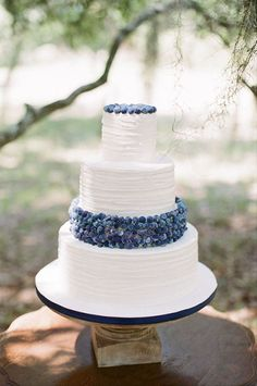 Wedding cake with blueberries | Brides.com | Photo: Ashley Seawell Photography