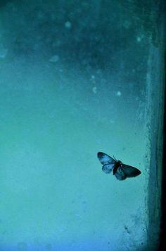 #teal #blue