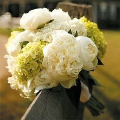 Pretty much sums up how I want the entire wedding to look. Two jumbo white hydrangeas, three green hydrangeas, 10 white peonies & off-white satin ribbon. Bundle them up for a budget-friendly, beautiful bouqet. wedding-10-06-12