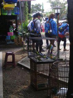 """♥~[Day3-4] KHJ-SBS """"Barefoot Friends"""" en Indonesia[28-29.04-13]~♥"""
