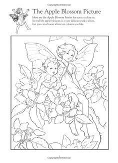 Flower Fairies Activity Book Based On The Original Books By Cicely Mary Barker
