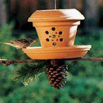 DIY Bird Feeder Project Ideas