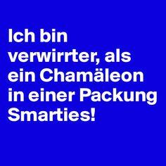 Ich bin verwirrter, als ein Chamäleon in einer Packung Smarties!