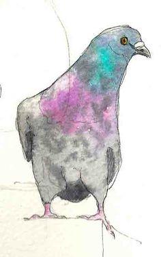 Google Image Result for http://1.bp.blogspot.com/-uW8pNEWXkkM/TdDjweC1k5I/AAAAAAAACMc/QJd-JUuEIsQ/s1600/Pigeon-study.jpg