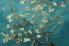 Delicate Almond Branches Mural, custom made to suit your wall size by the UK's No.1 for wall murals. Custom design service and express delivery available.