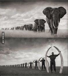 Powerful Photo