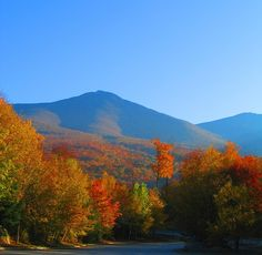 New Hampshire  White Mountain National Forest
