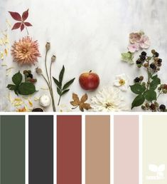 gathering autumn color pattern from Design Seeds Fall Color Schemes, Fall Color Palette, House Color Schemes, Colour Pallette, House Colors, Color Combos, Design Seeds, World Of Color, Color Stories