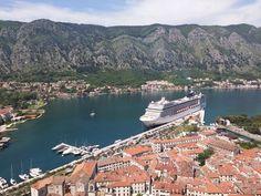 MSC Magnifica im Hafen von Kotor in Montenegro! #cruise #cruiseship #msccruises