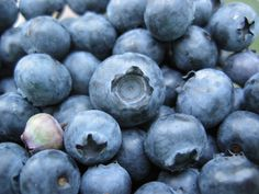 5 Top Super-Healthy Foods For Great Digestion – Get clean eating, healthy grocery list with FoodSniffr Gluten Free Food List, Vegan Food List, Blueberry Oatmeal Muffins, Blue Berry Muffins, Anti Oxidant Foods, Blueberry Juice, Blueberry Farm, Food For Digestion, Super Healthy Recipes